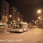 7246_n26collialbani