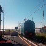 TAF41_vignadivalle